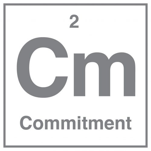 Commitment Icon, Quality Practice Project (QPP)
