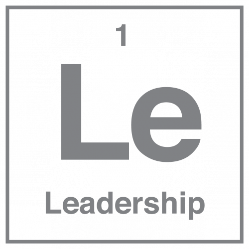 Leadership Icon, Quality Practice Project (QPP)