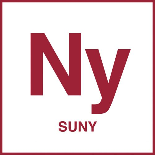 The State University of New York, Case study on charter school authorizing